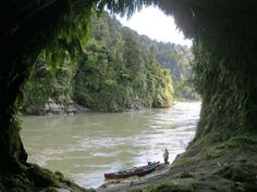 A cave on the Whanganui River in New Zealand, I would love to just float along this river! South Pacific, Pacific Ocean, State Of Arizona, Canoe Trip, Boat Tours, Caves, Geology, Adventure Travel, New Zealand