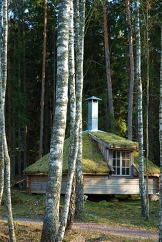 Urnatur eco hermitage in Ödeshög, Sweden. Cottage In The Woods, Cabins In The Woods, Yurt Living, Temporary Structures, Hotel Concept, Hotels, Unusual Homes, Natural Building, In The Tree