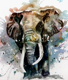 The Elephant by Steven Ponsford - The Elephant Painting - The Elephant Fine Art Prints and Posters for Sale Image Elephant, Elephant Love, Bull Elephant, Elephant Poster, Elephant Canvas, Watercolor Animals, Watercolor Art, Elephant Watercolor, Painting & Drawing