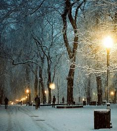 Snowy Night, Portland, Oregon