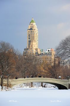 Central Park in winter, NYC