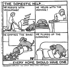 The Domestic Help...