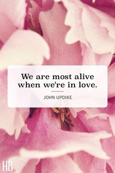 23 Romantic Valentine's Day Quotes That'll Charm and Swoon Your Partner