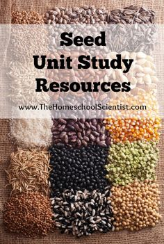 Seed Unit Study Resources