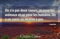 Citation Animaux, Coeur & Deux (Lamartine - Phrase n°72564) - CITATION CÉLÈBRE