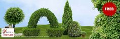 free mixed images of cut out shrubs and hedges pack 4