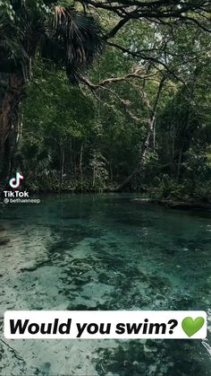 Nature Gif, Nature Videos, Video Photography, Nature Photography, Like Image, Funny Vid, Far Away, Amazing Nature, Serenity