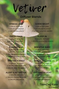 Among the most typical methods to benefit from fragrant vital oils is to mist those oils into the air, and after that inhale the scent. #essentialoildiffuserrecipes