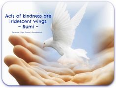 Acts of kindness are iridescent wings.   ~ Rumi ~