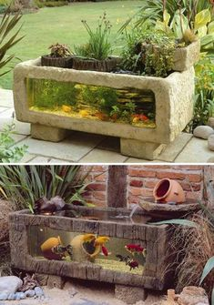 Unique outdoor fish tank idea! Perfect alternative to a pond.