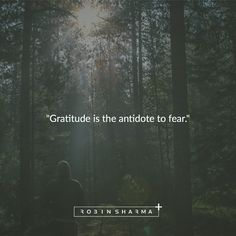 Gratitude is the antidote to fear.