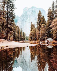 Fall colors are our favorite colors. Photo by @ryanlongnecker #liveauthentic #livefolk @folkmagazine (at Yosemite National Park)