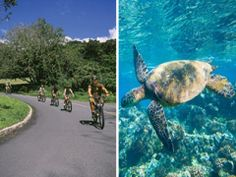 Bike, Hike, Sail & Snorkel Value Combo, Oahu / Waikiki tours & activities, fun things to do in Oahu / Waikiki | HawaiiActivities.com