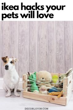 The best looking IKEA hacks for your pets! Create awesome DIY projects your furry friends will love. Ikea Furniture Hacks, Ikea Hacks, Ikea Cat, Ikea Kallax Unit, Ikea Makeover, Bunny Cages, Living With Cats, Cat Basket, Ikea Billy Bookcase
