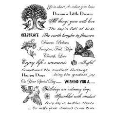 creative-expressions clear stamp - Google Search