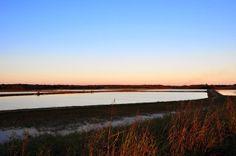 Catfish Ponds at Sunset Noxubee County MS @ Hickory Ridge Studio http://hickoryridgestudio49.blogspot.com