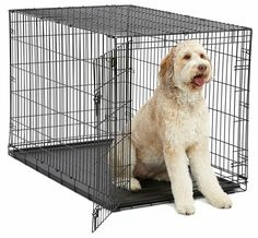 Results 1 - 24 of 146 - Petco Classic Dog Crates. You & Me Folding Dog Crate. OxGord's dog crate is available in 6 sizes – smal Dog Boarding Kennels, Pet Kennels, Large Dog Breeds, Large Dogs, Cheap Dog Cages, Extra Large Dog Crate, Pet Dogs, Pets
