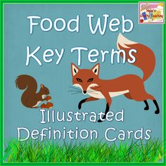 Food Chains and Food Webs - Illustrated Glossary of Terms #science #animals #habitats $