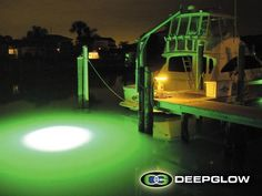 deepglow underwater lights to attract fish for night fishing. Dock Lighting, Cool Glow, Underwater Lights, Crappie Fishing, Aquarium Fish, Night Light, Attraction, Northern Lights, Concept