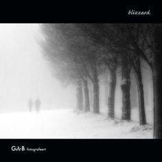 blizzard - #GdeBfotografeert