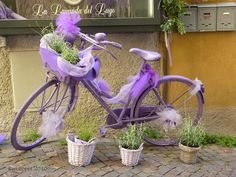 Lavender flowers in a bike basket with lavender ribbon draped on the bike