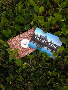 say thank you with a postcard!  | photo by @brittkal | artifact uprising postcard pack — http://www.artifactuprising.com/site/postcard