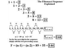 ✿ Fibonacci Secuencia y la Geometría Sagrada✿ Fibonacci Secuencia , viene del nombre su descubridor Leonardo de Pisa mejor conocido por fibonacci ,fue un matemático brillante pues descubrió la...
