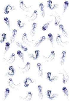 Jelly Fish Pattern. Water colour painting of jelly fish pattern, by Melbourne freelance illustrator.