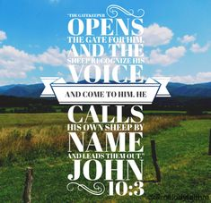 The sheep listen to his voice. He calls his own sheep by name and leads them out. John 10:3 Verse Of The Day, Start The Day, Sheep, The Voice, Names, Words, Horse