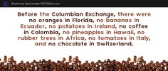 Before the Columbian Exchange, there were no oranges in Florida, no bananas in Ecuador, no potatoes in Ireland, no coffee in Colombia, no pineapples in Hawaii, no rubber trees in Africa, no tomatoes in Italy, and no chocolate in Switzerland.