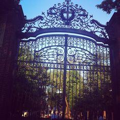 Harvard Boston, MA