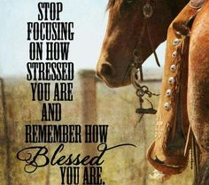 Stop focusing on how stressed you are and remember how BLESSED you are~ Amen thank You Jesus Rodeo Quotes, Cowboy Quotes, Cowgirl Quote, Equestrian Quotes, Racing Quotes, Equine Quotes, Western Quotes, Horse Sayings, Girl Sayings