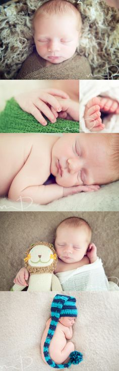 Newborn Boy, Asheville Newborn Photography, Molly Dockery Photography