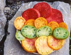 Growing Organic Tomatoes - Bing Images
