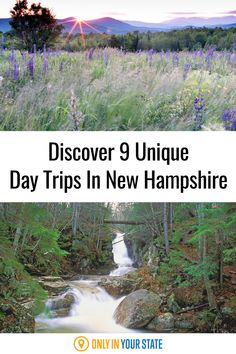 Find waterfalls, hiking trails, cruises, and more on this list! Discover some of the best local day trips in New Hampshire. Day Trips Near Me, Best Bucket List, Hidden Beach, Swimming Holes, How To Get Warm, New Hampshire, Cruises, Natural Wonders, Hiking Trails