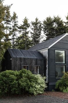 The home's charred-wood addition, surrounded by Maine brush.