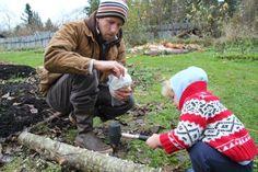 Chris M. and Kai inoculate alder logs with oyster mushroom plugs.