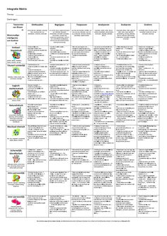 Meervoudige intelligentie. Taxonomie van Bloom en Meervoudige Intelligentie in schema