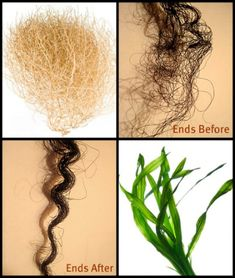 6 Steps to Longer-Lasting Sealed Ends   Black Girl with Long Hair
