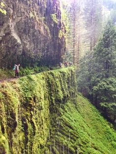 tunnel falls hike, Columbia River Gorge, OR #TravelUSA #site:travelusalink.top