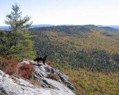 Blueberry Mountain - Weld, Maine