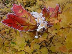 FOR SALE The Dragon Maple Flame OOAK poseable art doll resin