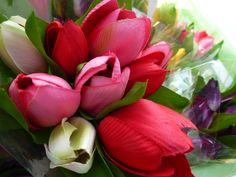 plastic tulips