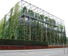 Jakob Webnet stainless steel mesh trellis wall