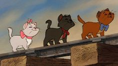 13 Disney Cats So Cute They'll Make You a Cat Person | Oh My Disney | Awww