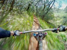 Cruising the trail