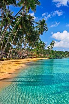 (Caribbean beach.