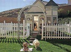 Luxurious Dog House