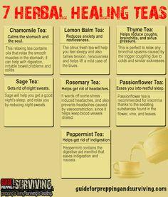 7 Herbal Healing Teas