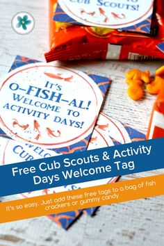 Use these free LDS Activity Days and Cub Scout welcome tags to help welcome all the new cub scouts and activity days girls to your group! #ActivityDays #LDSActivityDays #WelcomeTag #LDSprintables #FreePrintables #Ministering #MinisteringPrintables Activity Day Girls, Activity Days, Cub Scouts, Lds, Welcome, Free Printables, Core, Diy Crafts, Crafty